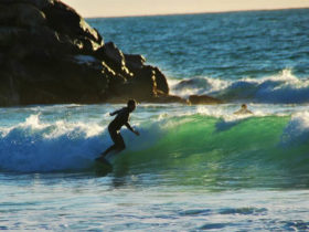 backpackers-surfing