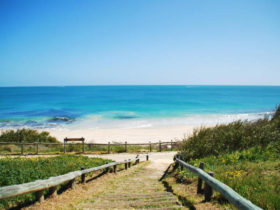 cottesloe-beach-backpackers